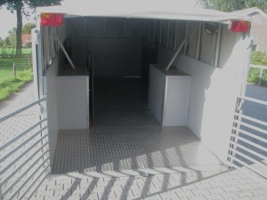2009-019